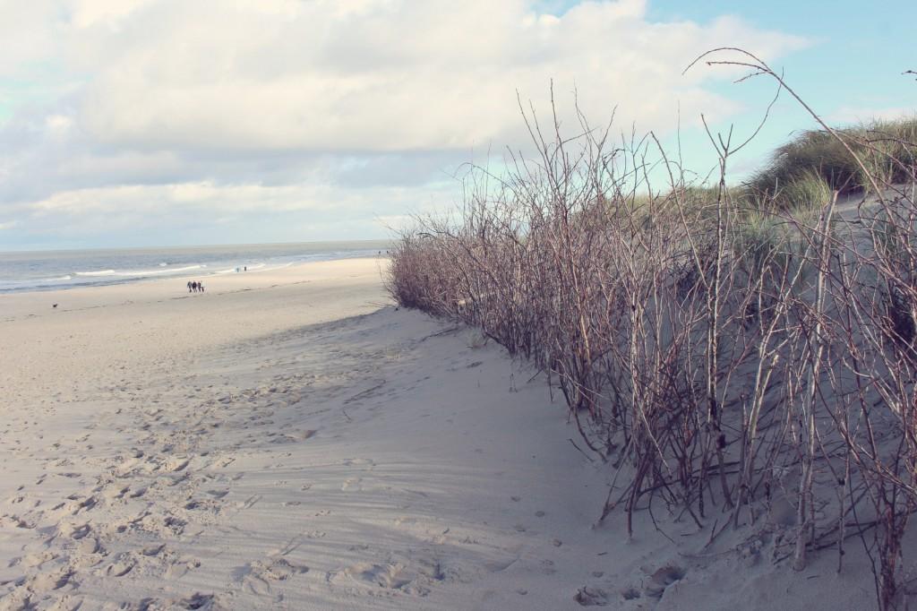 Norderney, Weiße Düne, Strand, Nordsee, Insel