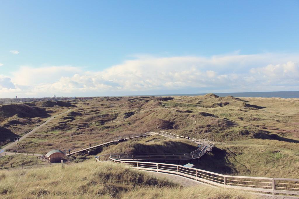 Norderney, Dünenlandschaft, Dünen, Insel, Düne, Weiße Düne